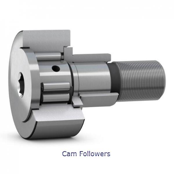 INA KR19-PP-SK Crowned & Flat Cam Followers #1 image